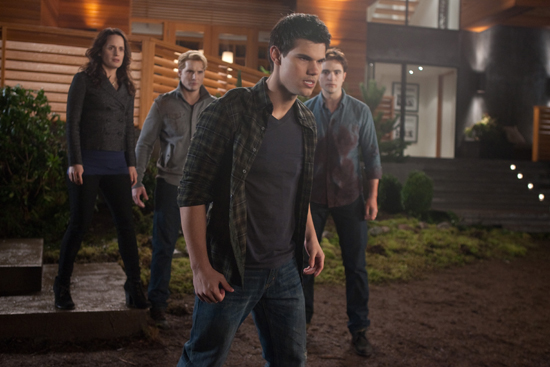 DVD REVIEW   The Twilight Saga: Breaking Dawn (Part One)