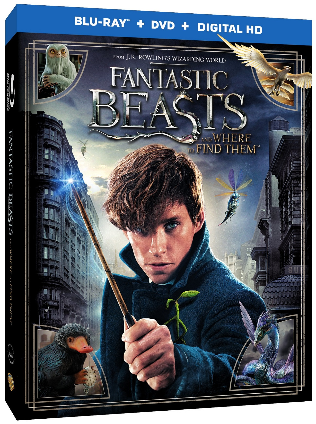 Fantastic Beasts Blu-Ray